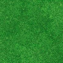 Grass decor, bedruckter Teppichboden mit B1 C-fls1