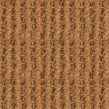 SISALDECOR , bedruckter Teppichboden mit B1 C-fls1