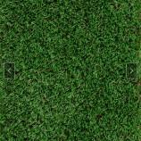 Rasen 16 - Gesamthöhe 42mm